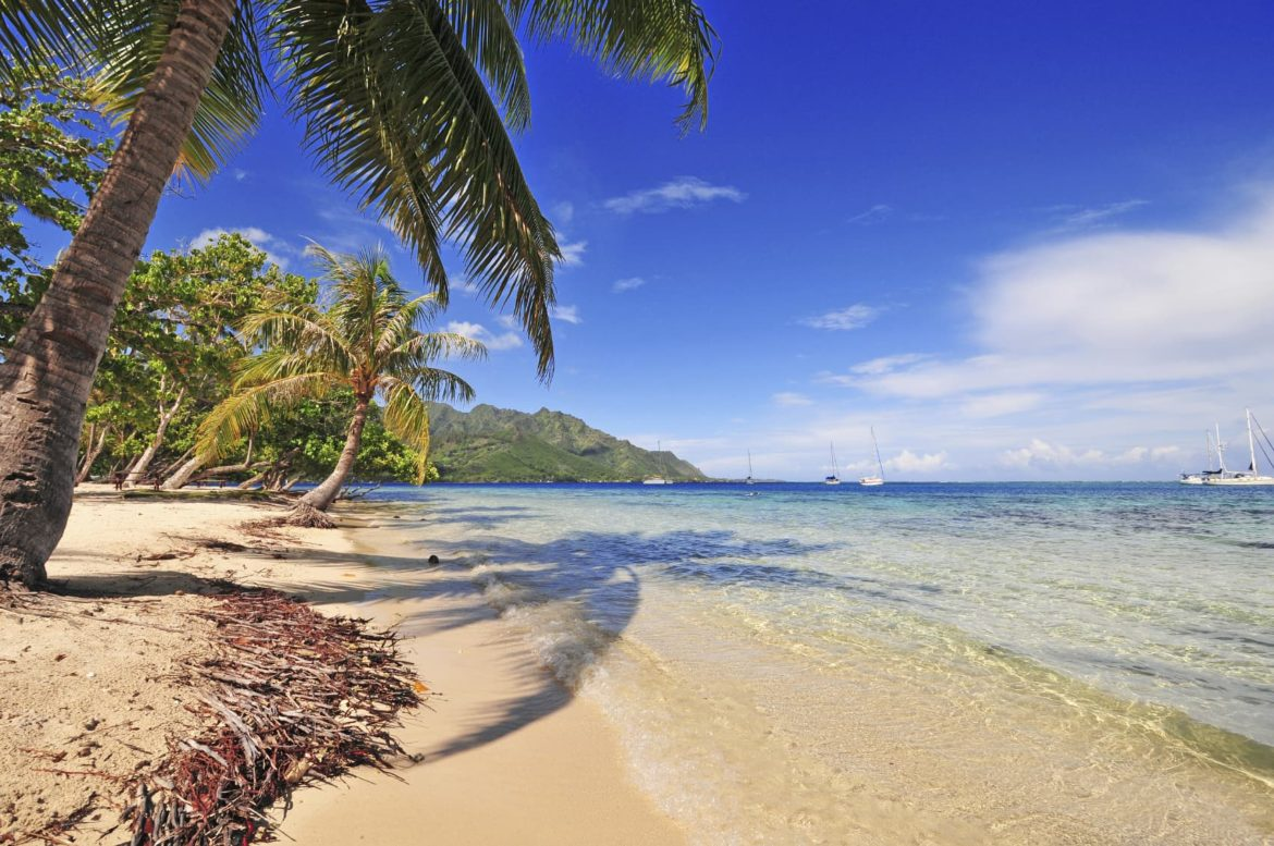Palm lined beaches welcome you on your French Polynesia yacht charter