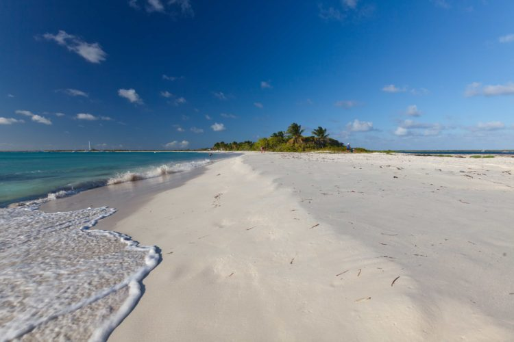 white sand beach with surf on the shore