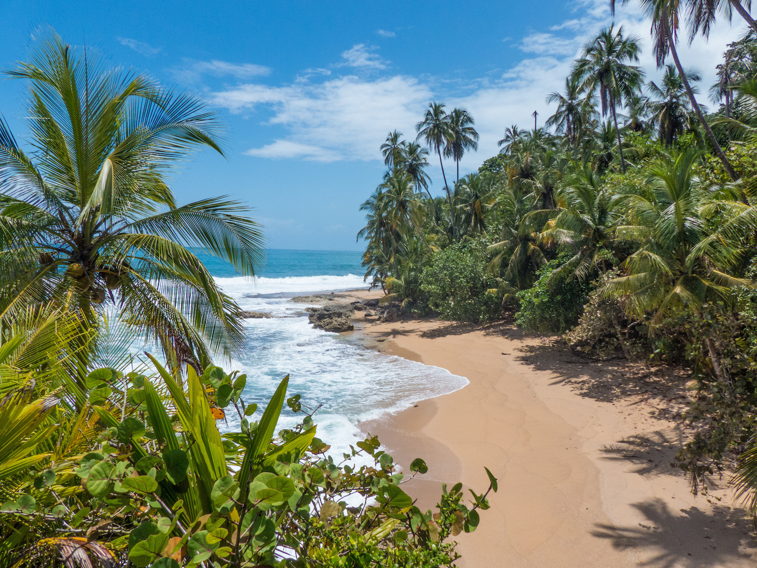 A sandy beach surrounded by palm trees and blue waves. The kind of spot you can only get to on a superyacht charter.