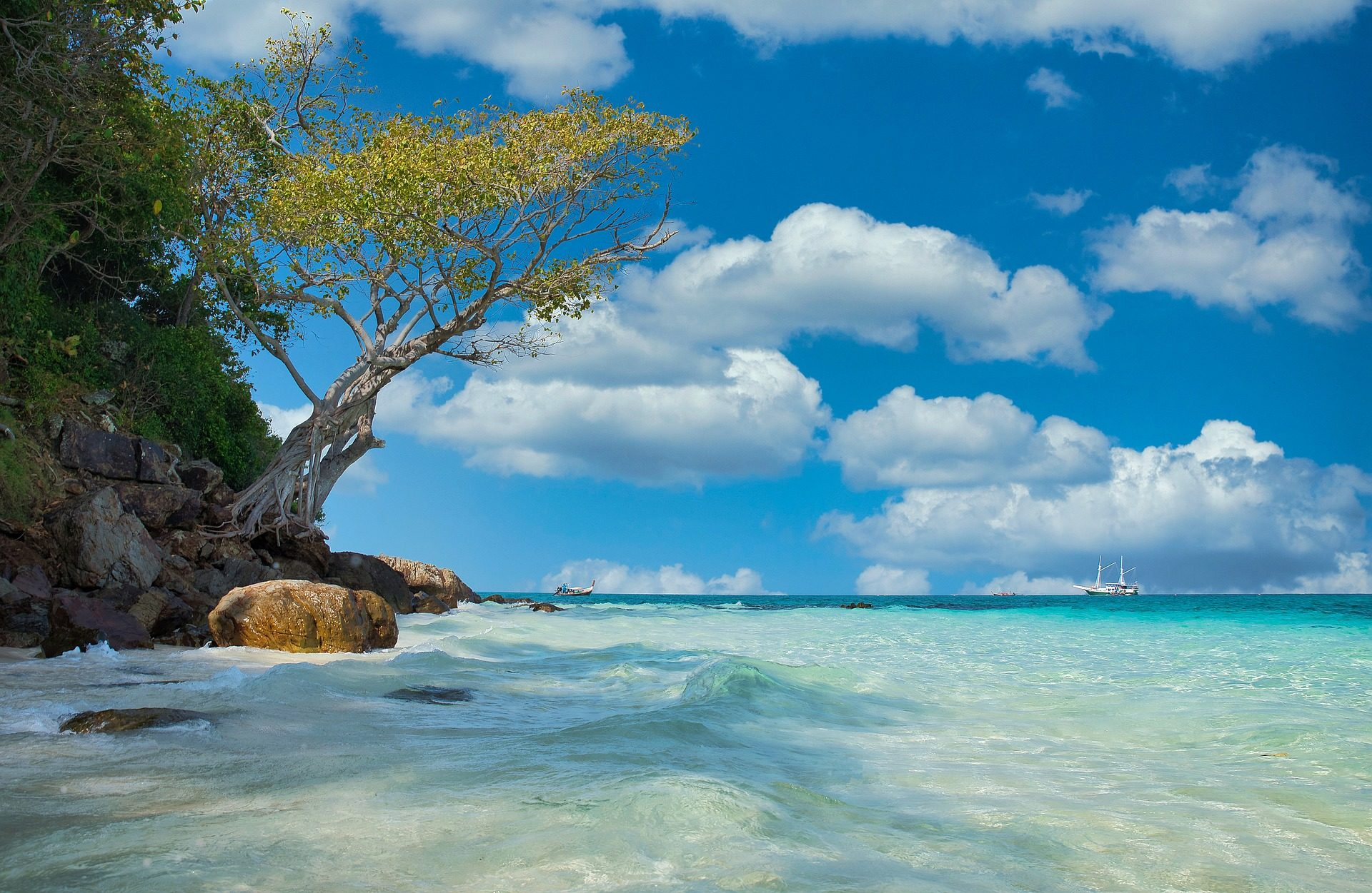 turquoise water of southeast Asia washing up on shore with lone tree