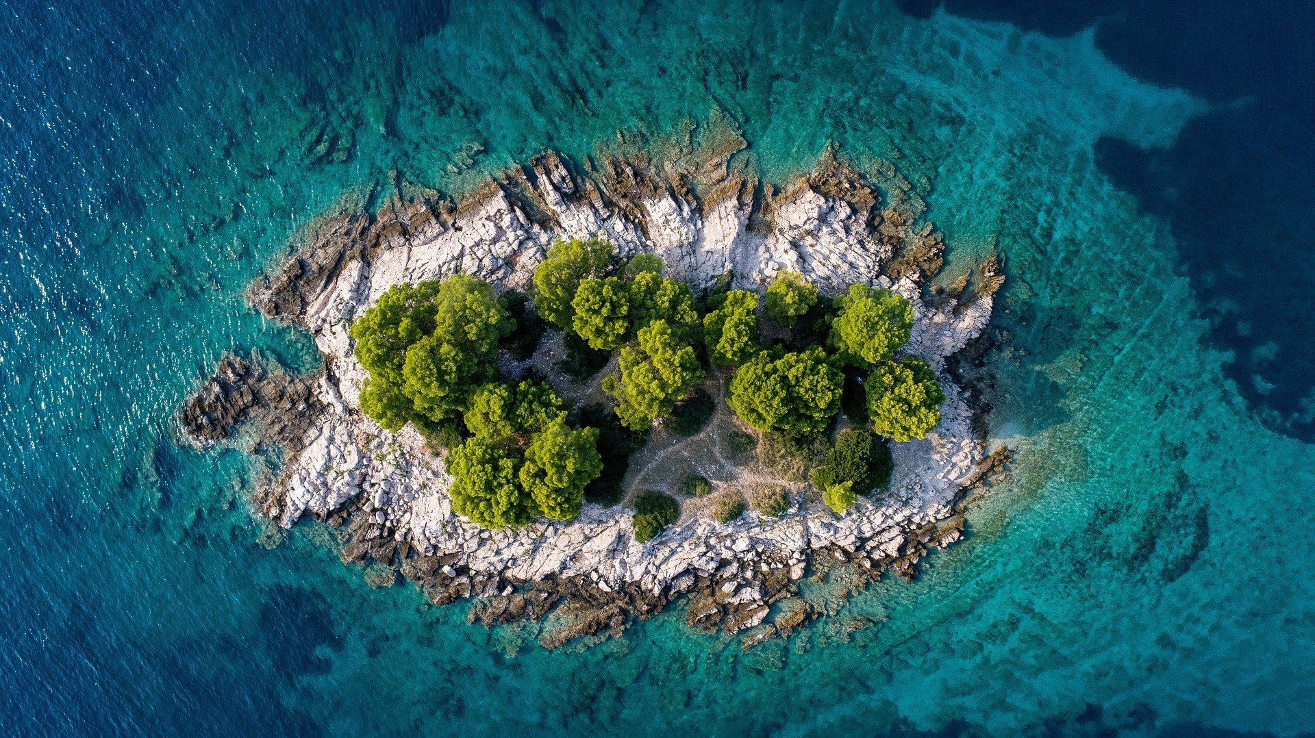 aerial view of rocky island with trees on it in Croatia