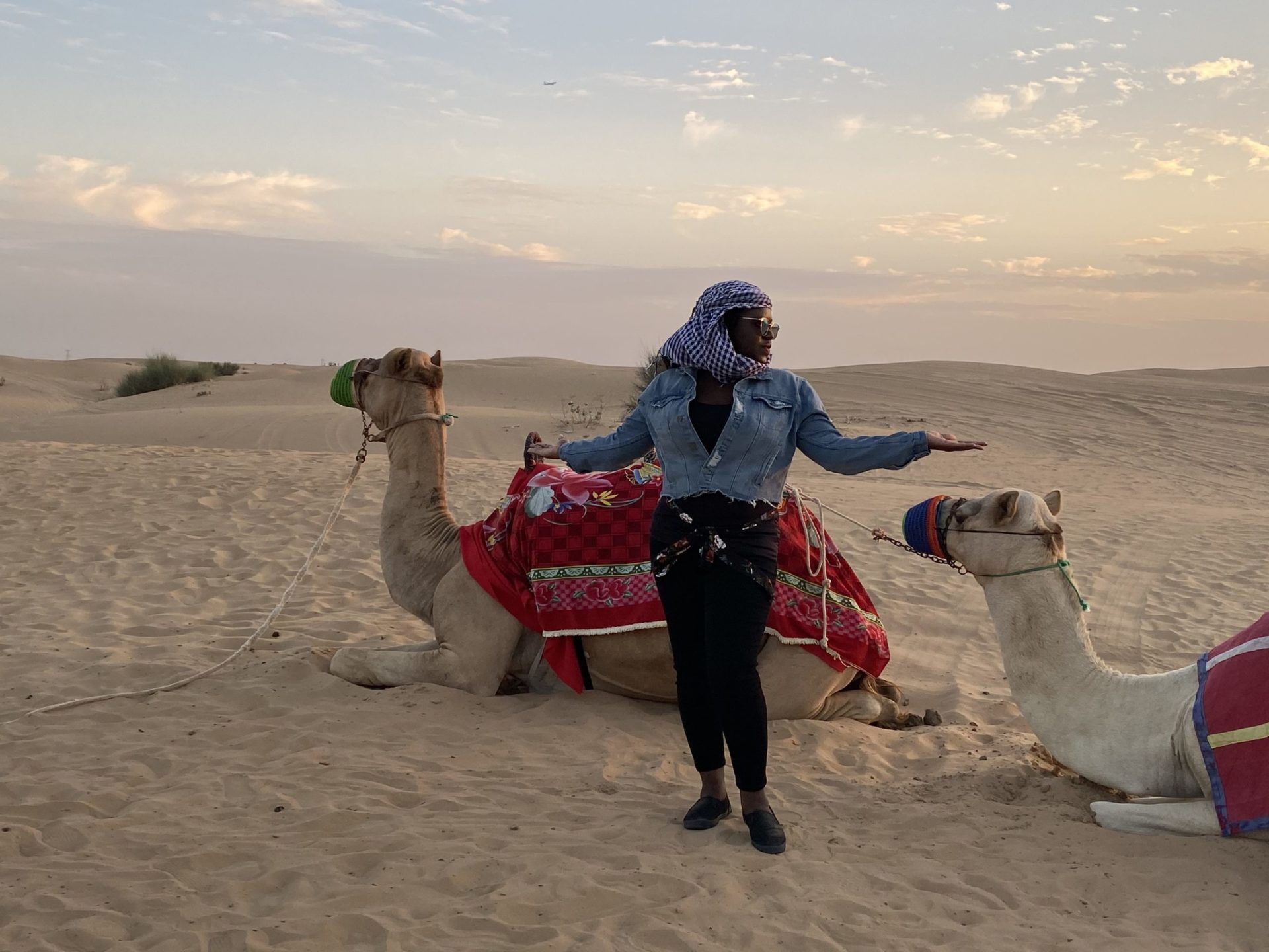 Black woman standing in front of two camels laying in the desert