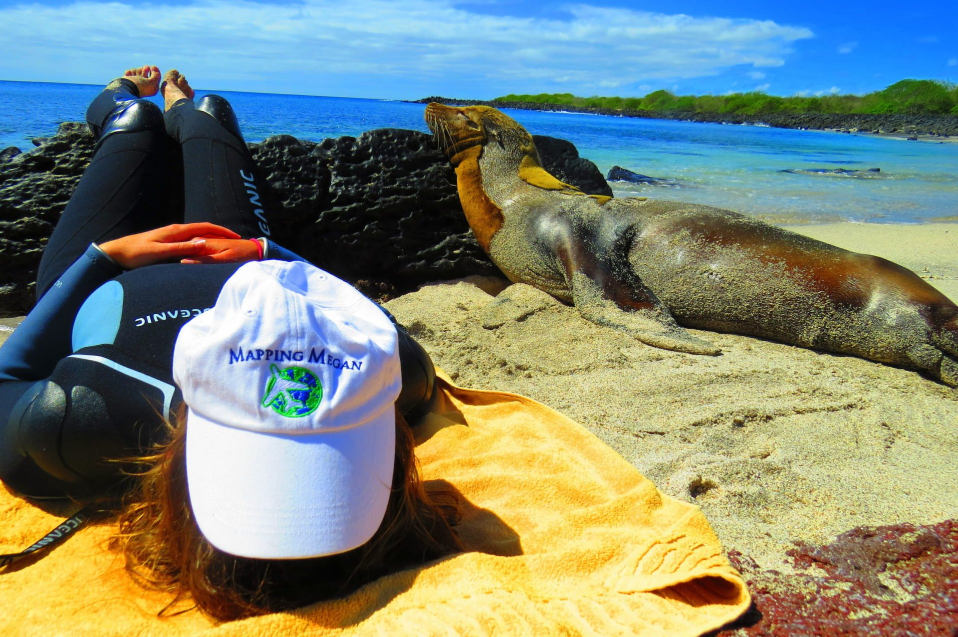 Girl with hat coering her face on a beach in the Galapagos with seal laying beside her
