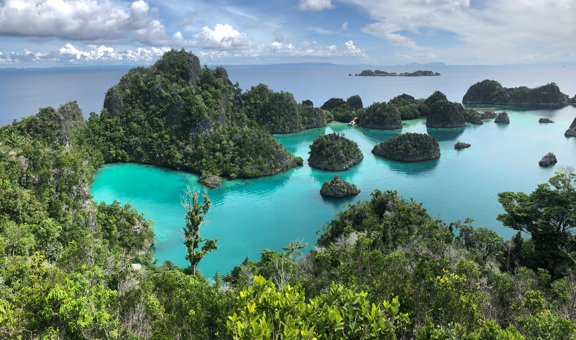 aerial view of Raja Ampat islands with turquoise waters and lush green forests in the Coral Triangle