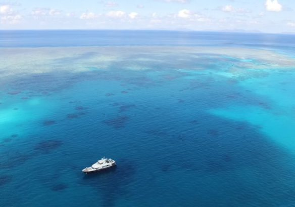 Copy of AURORA_in the great barrier reef
